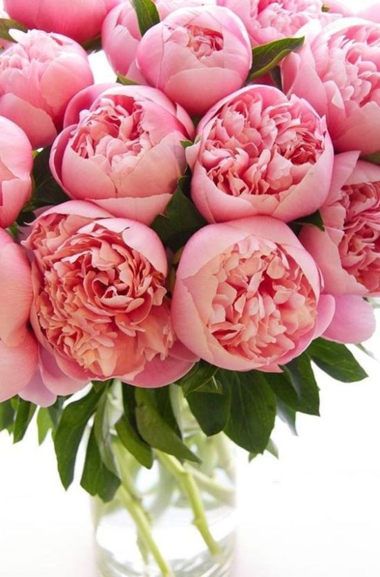 Peonies Summer Wedding Flower