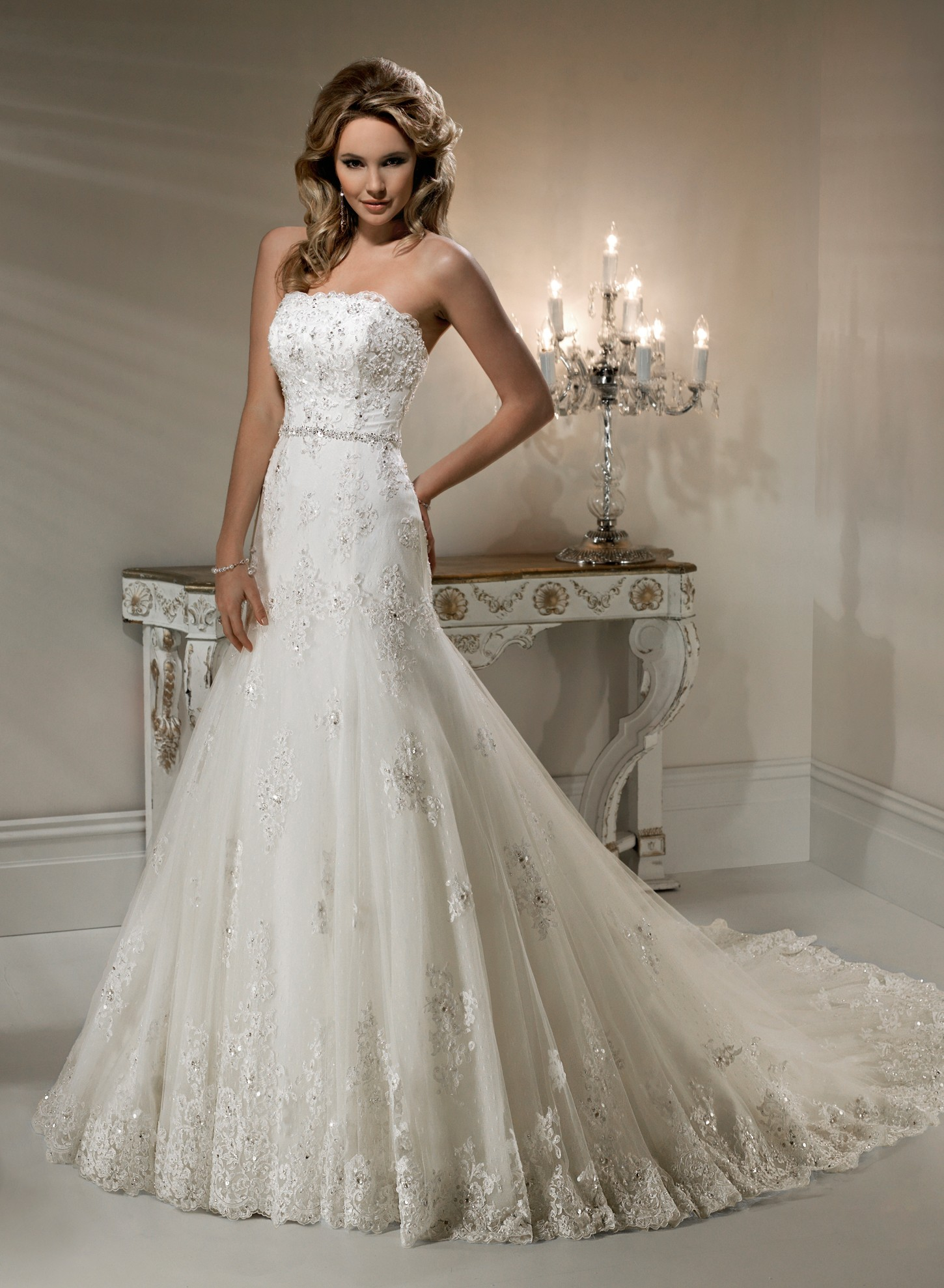 Beautiful Photos of Lace A-line Wedding Dresses for Classical Look ...