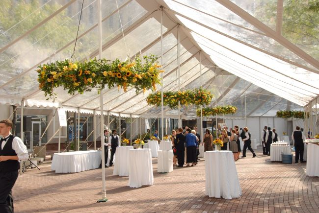 Backyard Wedding Tent Decoration With Hanging Flowers